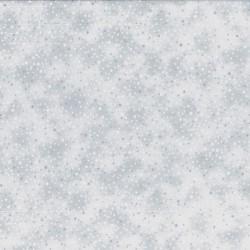 SNOW - SNOW/SILVER