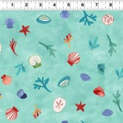 Sea Shells - AQUA