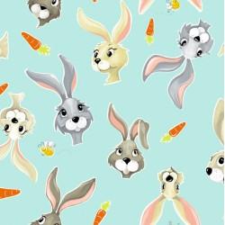 Hares & Carrots - AQUA