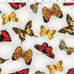 BUTTERFLIES - LT KHAKI