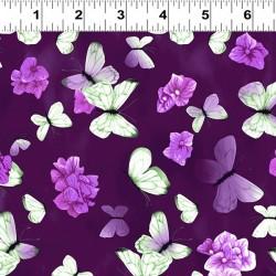 Butterflies - EGGPLANT
