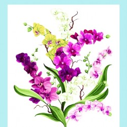 Orchid Fancy Panel (60cm) - WHITE