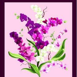 Orchid Fancy Panel (60cm) - ORCHID