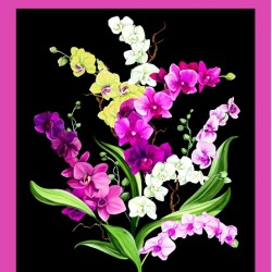 Orchid Fancy Panel (60cm) - BLACK