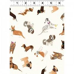 Dogs - CREAM