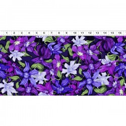 Packed Clematis - PURPLE
