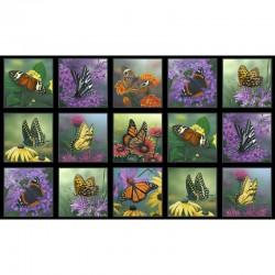Panel - Butterflies 60cm - BLACK