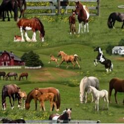Horses - GREEN