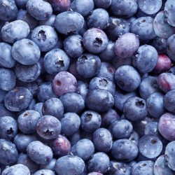 Packed Blueberries - BLUE