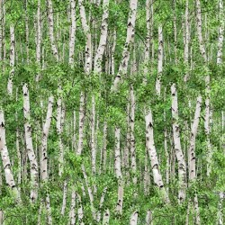 Forest Birch - GREEN