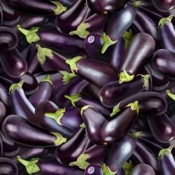 Eggplant - PURPLE