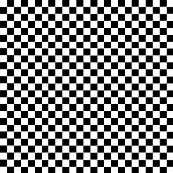 Check - BLACK/WHITE