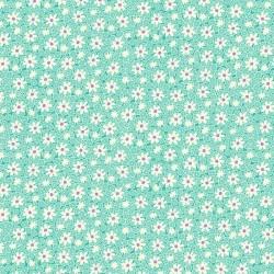 Packed Daisies - AQUA