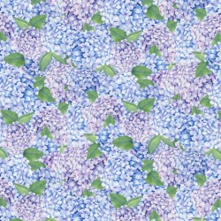 HYDRANGEAS - BLUE