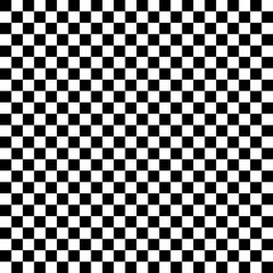 CHECKER - BLACK/WHITE