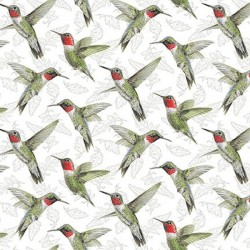Hummingbirds - MULTI