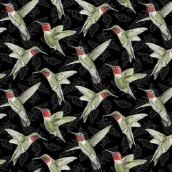 Hummingbirds - BLACK