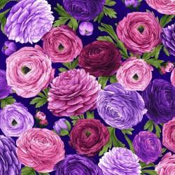 Ranunculus Floral - ROYAL