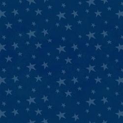 Stars - NAVY
