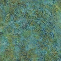 Coral - REEF