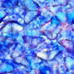 Butterflies - MARIPOSA