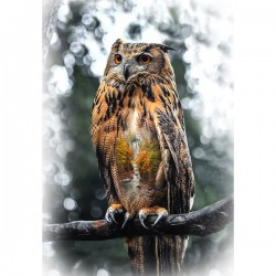 Panel - Owl 76cm - AUTUMN