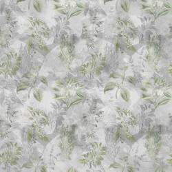 Botanical Drawings - EARL GRAY