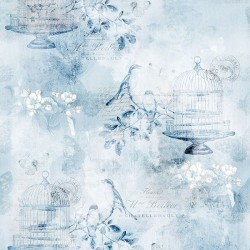 Birds and Cage - ICE BLUE
