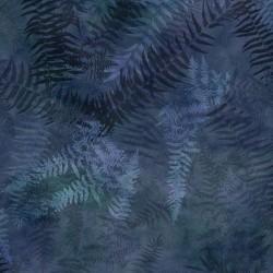 Ferns Digital - MOONSTRUCK