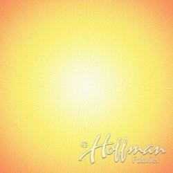 SUPERNOVA PANEL (1.1M) - SUN
