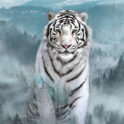 WHITE TIGER DIGITAL PANEL (73CM)