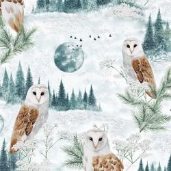 Owls - SEAFOAM/SILVER