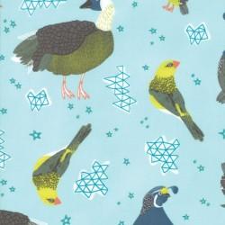 State Birds - FOG