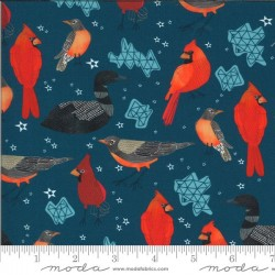 Midwest State Birds - SAILCLOTH