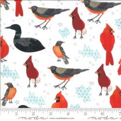 Midwest State Birds - FOAM