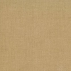 FG Favorites Basics-Linen Texture - TEA