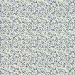 Aricia - PEARL/BLUE