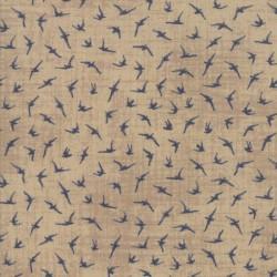 Seabirds - SAND
