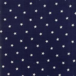 STARS - INDIGO