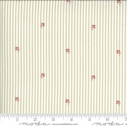 Stripe - TAUPE