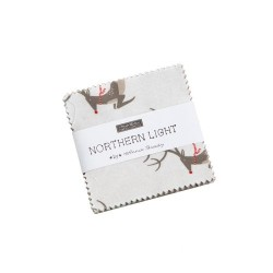 Northern Light Mini Charm Pk
