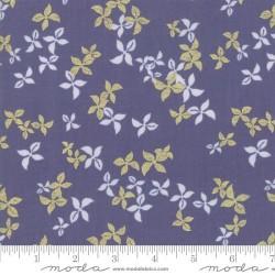 Winter blossom - SAPPHIRE