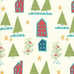 HOUSES - SNOW