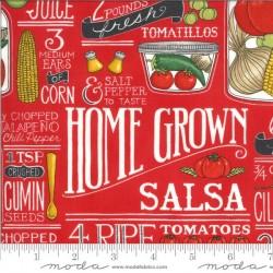 Salsa Recipe - TOMATO