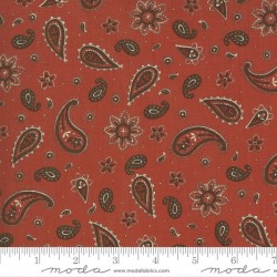 Bandana Print - CLAY RED