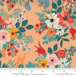 Wild Flowers - CANTALOUPE