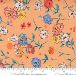 Full Bloom - CANTALOUPE