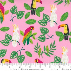 Birds in Paradise - PINK