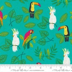 Birds in Paradise - PEACOCK