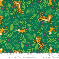 Jungle Fun - MONSTERA
